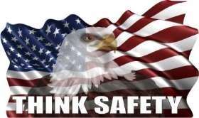 U.S. Flag - Wavy W/Eagle - Think Safety Stock Hard Hat Graphic