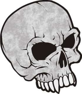 Skull - Stock Hard Hat Graphic